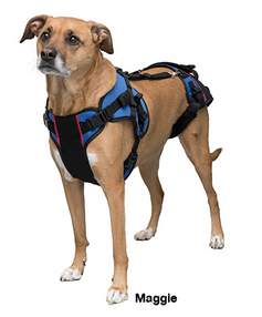 Harnesses Amp Slings Dog Wheelchairs Dog Carts